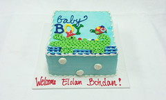 Baby Boy Cake (tasteoflovebakery) Tags: blue boy red baby green yellow cake turtle alligator welcome congratulations congrats