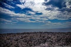 Cap d'Antibes - Alpes Maritimes - France (Asia Trip Tour - Sbastien Pagliardini) Tags: ocean blue sky mer alpes de landscape nice marine photographie pics cannes horizon paca bleu cote paysage loin hdr bord maritimes regard matin dazur dpartement