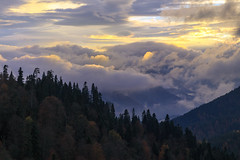 The day to say goodbye (RKAMARI) Tags: travel trees light sunset color nature clouds forest dark landscape outdoor earth serene silhoutte bolu yedigller