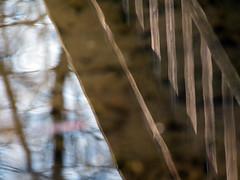 """Wasserspiegelung (""""MRperspektiveFoto"""" Steiermark - Graz - Fotos) Tags: holz reflektion spiegelungen wasserspiegelung brckenbergang"""