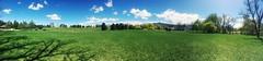 grass fied (Alexey Tyudelekov) Tags: utah usa 2016 us saltlakecity grass green pano panorama park