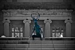 Sitting Deer (tim.perdue) Tags: park city blue columbus ohio urban bw sculpture white black color green art public monochrome bronze downtown artist sitting allen steps deer genoa cast terry scioto mile sculptor anthropomorphic