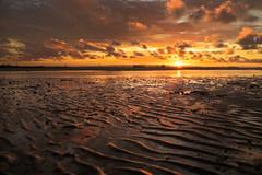Sand grazing (Robyn Hooz) Tags: light sunset sun water yellow tramonto tide low dune salt giallo ripples lowtide sole acqua grazing