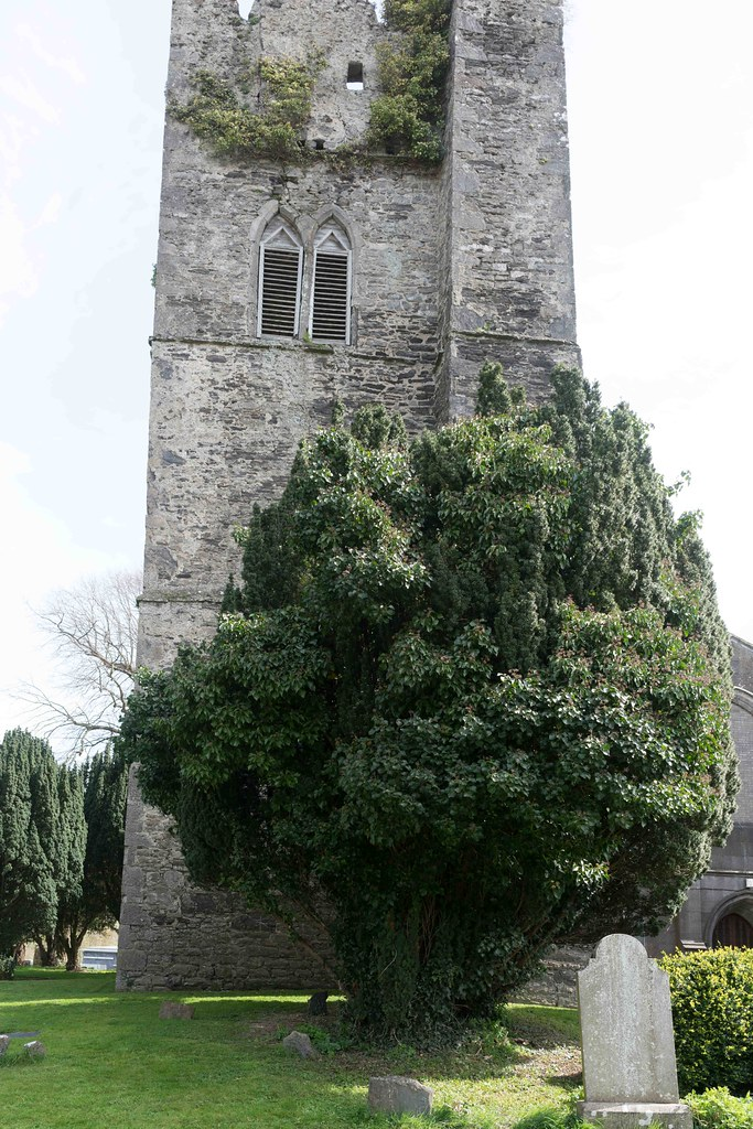 St. Columba's Church And Grounds In Swords County Dublin [Church Road]-115242