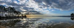 Same place, different time III (Seacloud & sun 9.55 AM) ((Virginie Le Carr)) Tags: lake reflection tree sunrise landscape horizon lac arbres shadowpuppet paysage reflets hdr pontoon ponton ombrechinoise leverdesoleil sanguinet
