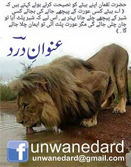Unwan e Dard Back Title Page (Dard Poetry) by Muhammad Ali Raza & Zainab Love Story Urdu Book (Unwan-e-Dard (Dard urdu sad Poetry)) Tags: love by book back poetry ali story e page title zainab muhammad raza urdu dard unwan