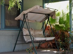 Worn But Still Comfortable (mikecogh) Tags: comfortable chair swing veranda exeter worn fanpalms