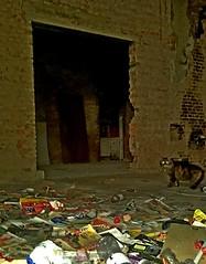 Urbex photobomber (breboen) Tags: old city wall cat decay interior empty pussy kitty clean dirt worn aged bomb puss pussycat abandonned urbex merksem