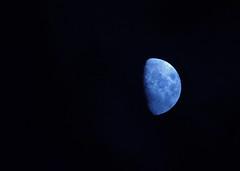 Just blue (STTH64) Tags: blue light sky moon night evening twilight luna crater planet moonlight