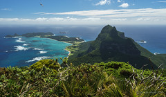 View from Mt Gower summit (NettyA) Tags: plants landscape flora view australia hike nsw summit day6 bushwalk unescoworldheritage lordhoweisland 2016 lhi mtgower janetteasche lordhoweforclimate mtgowerclimb