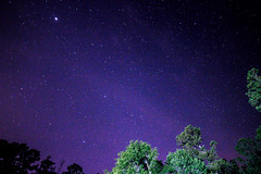 First shot of the night (L.Grey Photography) Tags: trees sky night canon stars rebel nc purple astrophotography sl1 10mm rokinon