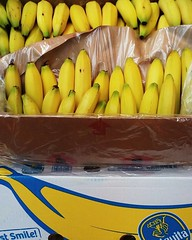 """#HummerCatering #Eventcatering #mobile #Smoothiebar #Euskirchen #eregio #Smoothie #chiquita @Granini Tag 2 http://goo.gl/B2w0Io • <a style=""""font-size:0.8em;"""" href=""""http://www.flickr.com/photos/69233503@N08/26518533502/"""" target=""""_blank"""">View on Flickr</a>"""
