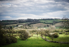 Spring comes to the Cotswolds (judy dean) Tags: trees clouds scenery cotswolds hills farms greysky hedges 2016 judydean sonya6000