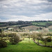 Spring comes to the Cotswolds
