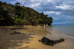 Abel Tasman - 08 (coopertje) Tags: ocean park newzealand beach coast national southisland abel tasman nieuwzeeland