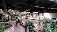 San Antonio River Walk. (dckellyphoto) Tags: woman plants reflection water metal sanantonio river texas reflect walkway brigde riverwalk 2016 paseodelro