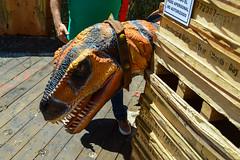 DYHNO - Tierra de Dinosaurios (13) (Josu Caraveo) Tags: mxico bajacalifornia mexicali dinosaurios bosquedelaciudad dyhno dinosaurios