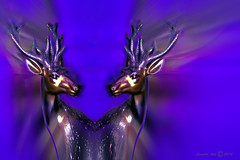 Two souls (Camilla's photos! Thank you for viewing ) Tags: two abstract art love souls norway digital photoshop hearts energy spirit expression pair manipulation olympus deer fantasy imagination figurative lumia