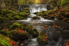 Water Wall (Philippe Saire    Photography) Tags: canon eos 5d mark iii ef 1740mm f4l usm nature paysage landscape eau water cascade chute fall waterfall long exposure pierre rock rocher stone stream flow mousse moss vert green suisse switzerland swiss areuse saintsulpice valdetravers arbre tree sapin foret forest bois hood wood feuille leaf automne autumn color couleur terre ground sol terrain land light lumiere fullframe ff pleinformat philippesaire explore schweiz photo photography wideangle