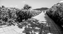 Prom Paths. (CWhatPhotos) Tags: cwhatphotos prom promanade marmaris olympus samyang fisheye fish eye 75mm wide angle prime lens water holiday june 2015 photographs photograph pics pictures pic image images foto fotos photography artistic that have which contain digital bythe blue turkey sea beach wear sand walk sky skies clear day hot sunny sun aegeon aegean turkish hols epl5 manual focus