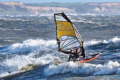 PC311099-Edit (Brian Wadie Photographer) Tags: gulls oystercatcher windsurfing kiting em1 goodlight 14xtc avonbeach canon70300lis hemgistburyhead