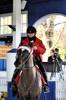 2015-12-19 (47) r7 outrider (JLeeFleenor) Tags: photos photography md marylandracing marylandhorseracing racing laurelpark horses thoroughbreds equine equestrian cheval cavalo cavallo cavall caballo pferd paard perd hevonen hest hestur cal kon konj beygir capall ceffyl cuddy yarraman faras alogo soos kuda uma pfeerd koin حصان кон 马 häst άλογο סוס घोड़ा 馬 koń лошадь outrider hats horsepeople trackpeople paddock maryland