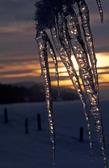 Tramonto ghiacciato... (silvano fabris) Tags: sunset snow ice tramonto neve inverno ghiaccio