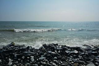 India - Tamil Nadu - Pondicherry - Coastline - 115