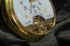 TinyTuesday (freyjad1706) Tags: macro watch pick blip
