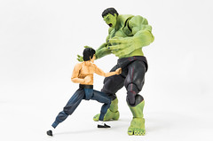 One punch (AwesomeTyrell) Tags: hulk brucelee figma shfiguarts