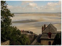 Mont Saint-Michel, L'alta marea avanza (mauro.cagna) Tags: di francia viaggio normandia 2010 nozze bretagna nonikon