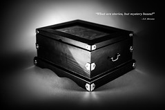 365_039 DISCOVER (therringshaw) Tags: shadow white black mystery box chest 365 discover