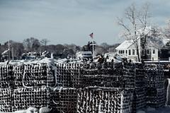 Birdcage (David Stebbing) Tags: snow color flickr