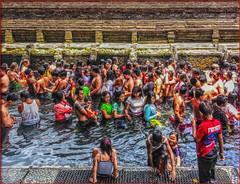 Holy spring 1 (Bruno Zaffoni) Tags: bali indonesia tirta empul pura
