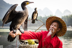 Cormorant - Arm Stand 037A9739 (lycheng99) Tags: china trees red mountains nature birds river cormorants beard landscape liriver fishing fisherman arm guilin bamboo cormorant guangxi bambooraft cormorantfishing xingping chinatravel armstand líjiāng