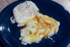 Poached Eggs (I <3 Bokeh) Tags: fiestaware poachedeggs egglandsbest
