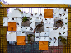 No Rose Garden (Steve Taylor (Photography)) Tags: wood city newzealand christchurch sculpture orange white plant fern art wall fence square design flora felt canterbury foliage plastic nz southisland cbd curve rectangle flowerbox oblong urbanliving