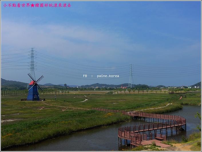 大阜島海邊香氣公園 (37).JPG