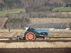 2016 black isle ploughing match (fraserskinner871) Tags: match blackisle fordson ploughing 2016 rossshire vintagetractor