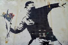 Crumbling Mural (Don Csar) Tags: flores flower art wall pared rebel graffiti grafiti palestine westbank middleeast banksy bethlehem belen palestina anarquist anarquista rebelde thrower mediooriente lanzando grafiteros