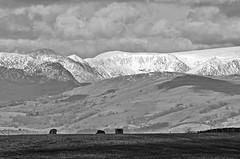 Lakeland Fells (warth man) Tags: mountains landscape fells englishlakedistrict southlakeland nikon70300mmvr d7000 silverefex