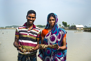 Nehar and his wife happy with their production in shrimp farming. Photo by A.w.m Anisuzzaman WorldFish.