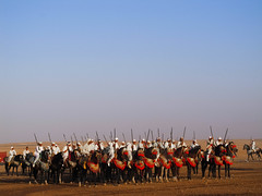 Morocco (mariamartins155) Tags: africa horse morocco cavalos marrocos cavaleiro