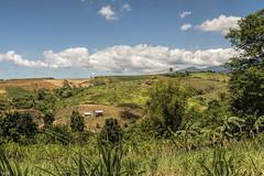 Guimbalaon Landscape