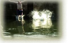 One swallow doesn't make a summer (houseplantkiller) Tags: summer water wall fun spring harbour dive deep freezing down strip shock dare trunks splash challenge upside thrill exuberance somersault irresistible harbourwall