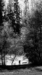 Natur & Mensch, Schbelweiher bei Ksnacht ZH. (Swiss.piton (B H & S C)) Tags: blackandwhite white black nature switzerland noiretblanc  schwarzundweiss beautifulexpression zuikolenses swissamateurphotographers olympus75mmf18microfourthirdslens zd75mm18 olympusdigitalcameraomdem5ii schbelweiherbeiksnachtzh