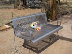 Abandoned (suenosdeuomi) Tags: bear newmexico santafe abandoned bench toy railyardpark canons90