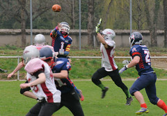 20160403_Avalanches Annecy Vs Falcons Bron (32 sur 51) (calace74) Tags: france annecy sport foot division falcons bron amricain avalanches rgional