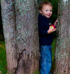 Nathan trees2 (Borntorun2016) Tags: portrait canon photography child