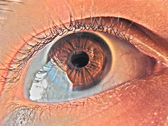 idk just my eye (Carmen Marval) Tags: brown color eye me ojo intense eyes nikon eyelashes venezuela yo vivid ojos latinoamerica coolpix olho braun quaint marron moreno auge occhio hdr alternative brun castao marrone pardo marrom il  pestaa   marrn  anzoategui l830 buraun yn hs